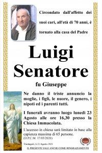 annunzio Senatore Luigi